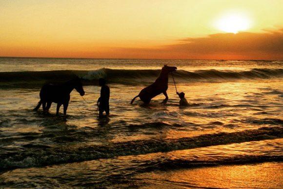 Pantai Nyanyi