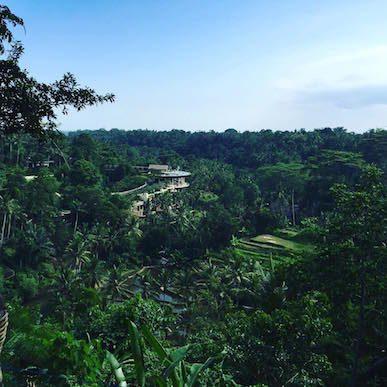 The Sayan House, Ubud